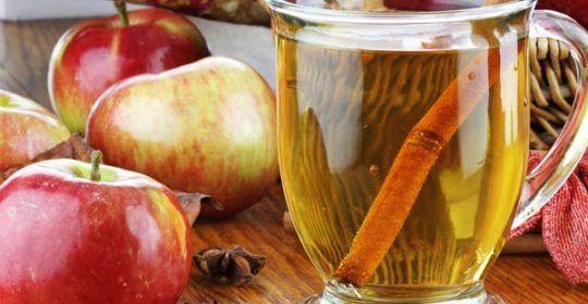 gastro-jabuke-voće-modnialmanah