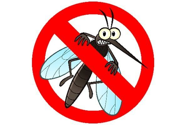 komarci-zdrav-život-zdravlje-modnialmanah