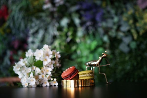 torteria-macaron-gastro-kolači-slatko-modnialmanah