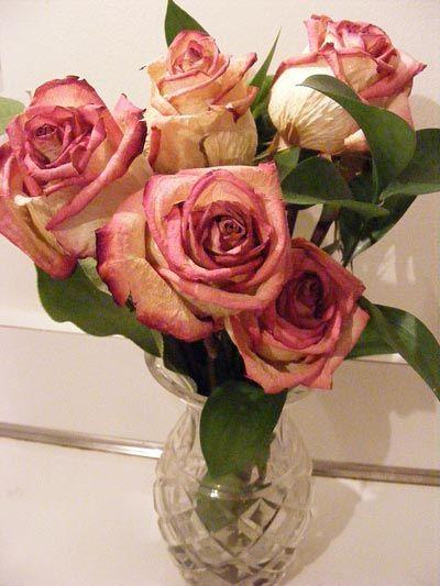 savjet-cvijeće-modnialmanah