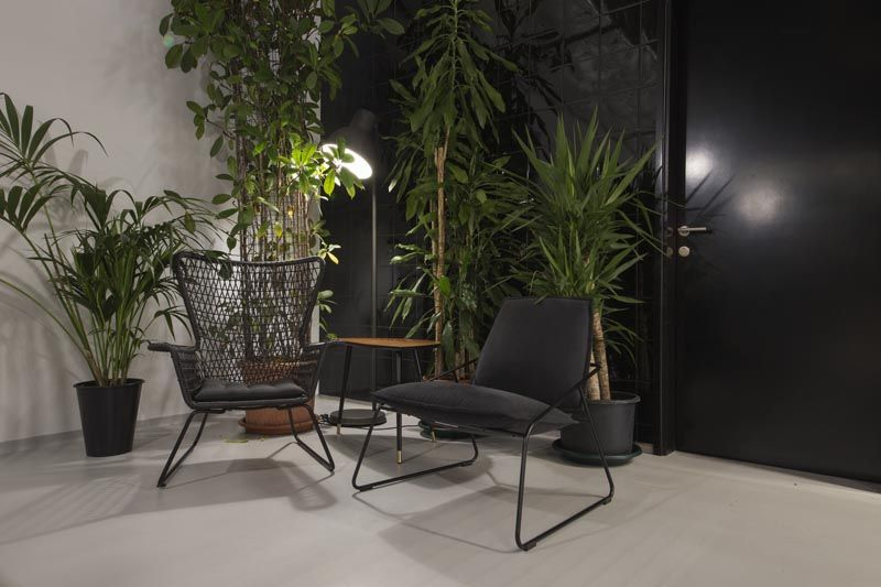 biljke-brigada-modnialmanah-lifestyle