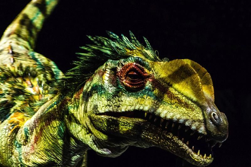šetnja-s-dinosaurima-modnialmanah-lifestyle