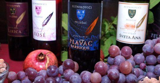 putniković-gastro-modnialmanah-vino