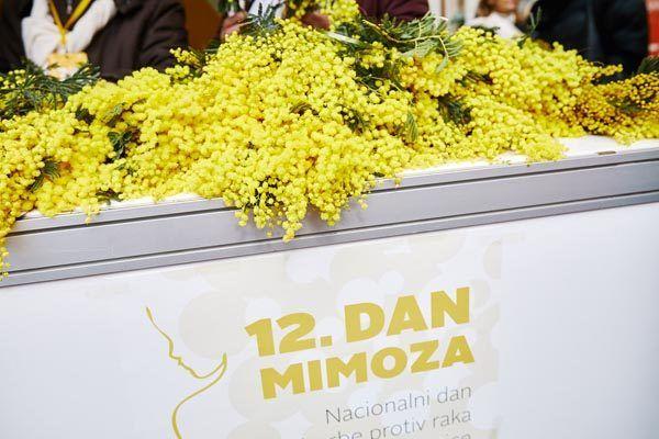 dan-mimoza-modnialmanah-lifestyle
