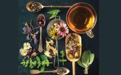 zdravlje-čaj-modnialmanah