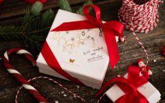 fashion-borboleta-modnialmanah-božić-saša-šekoranja