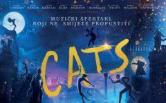 cats-cineplexx-lifestyle-film-kino-modnialmanah