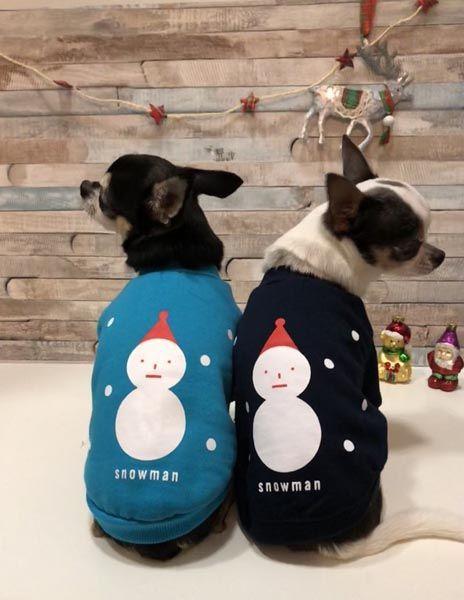 Double-Trouble-Dog-Boutique-shopping-modnialmanah-ljubimci