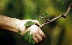 lifestyle-modnialmanah-ekologija