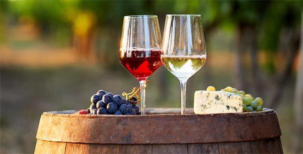 vino-gastronomija-mdnialmanah