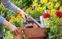 vrt-balkon-savjet-uređenje-eksterijer-modnialmanah