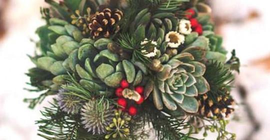 zima-cvijeće-praktični-savjet-modnialmanah