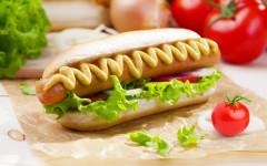 gastro-odabrale-mame-poli-modnialmanah-hot-dog-hrenovke