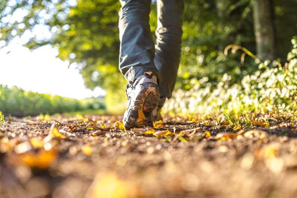 zdravlje-zdrav-život-stres-šuma-priroda-modnialmanah