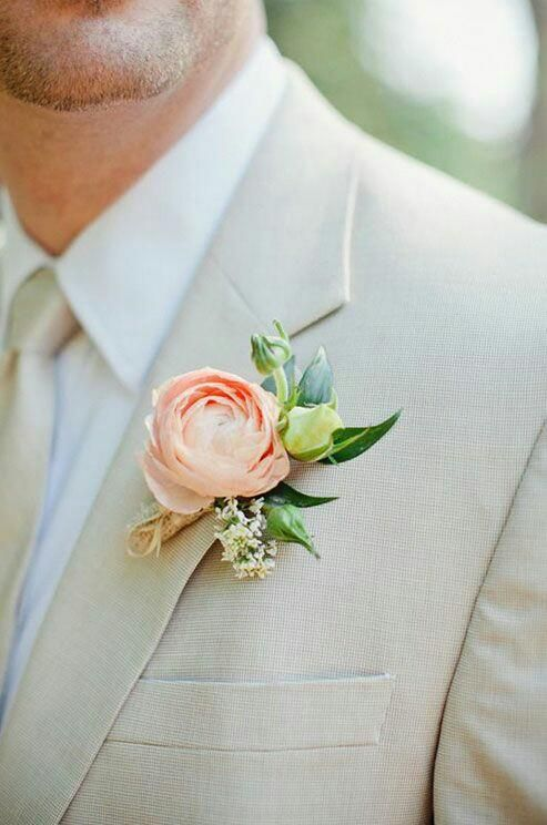 božur-praktični-savjet-majska-ruža-cvijet-modnialmanah