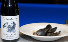 gastro-vino-uz-žlicu-modnialmanah-camping-plitvice-vino-wine