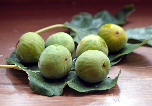 skokva-voće-zdravlje-zdrav-život-modnialmanah