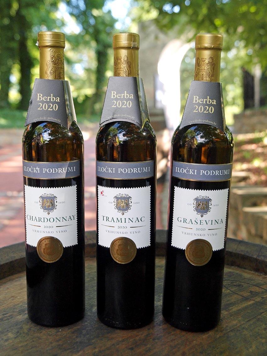 iločki-podrumi-ilok-gastro-vino-traminac-chardonnay-graševina-modnialmanah-1