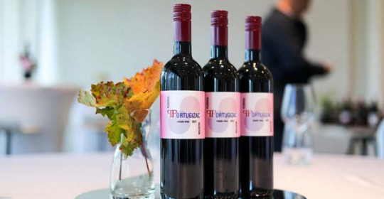 gastro-portugizac-selection-modnialmanah-vino